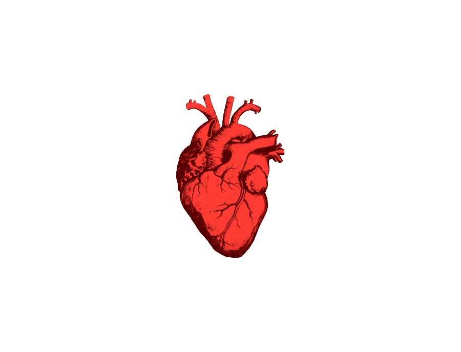 Joelma's heart pedal
