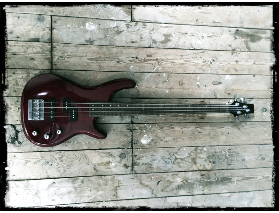 Cort long scale met P/J (fretless)