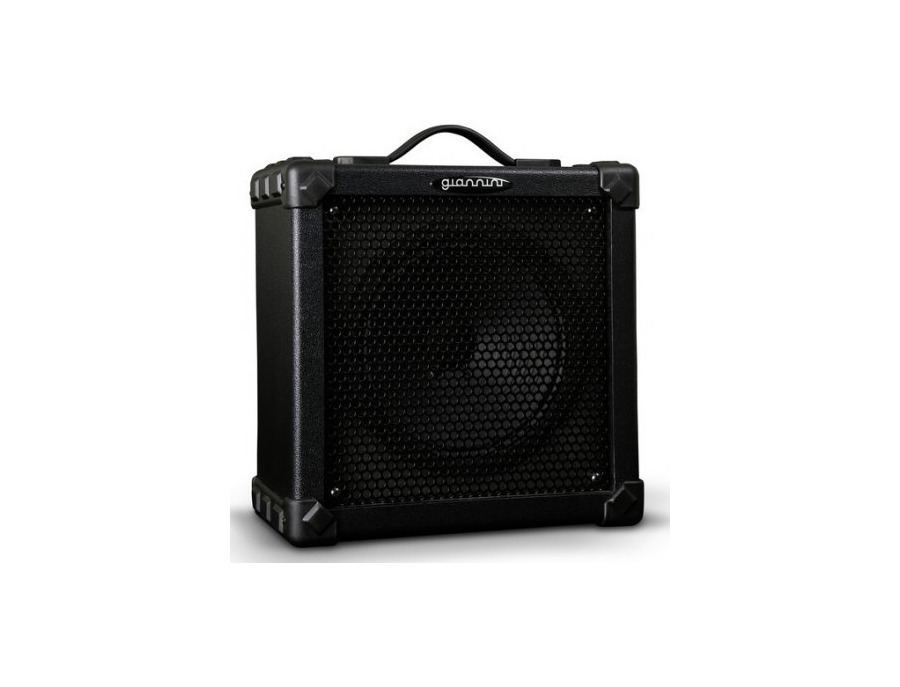 Bass Amplifier Gianinni B20