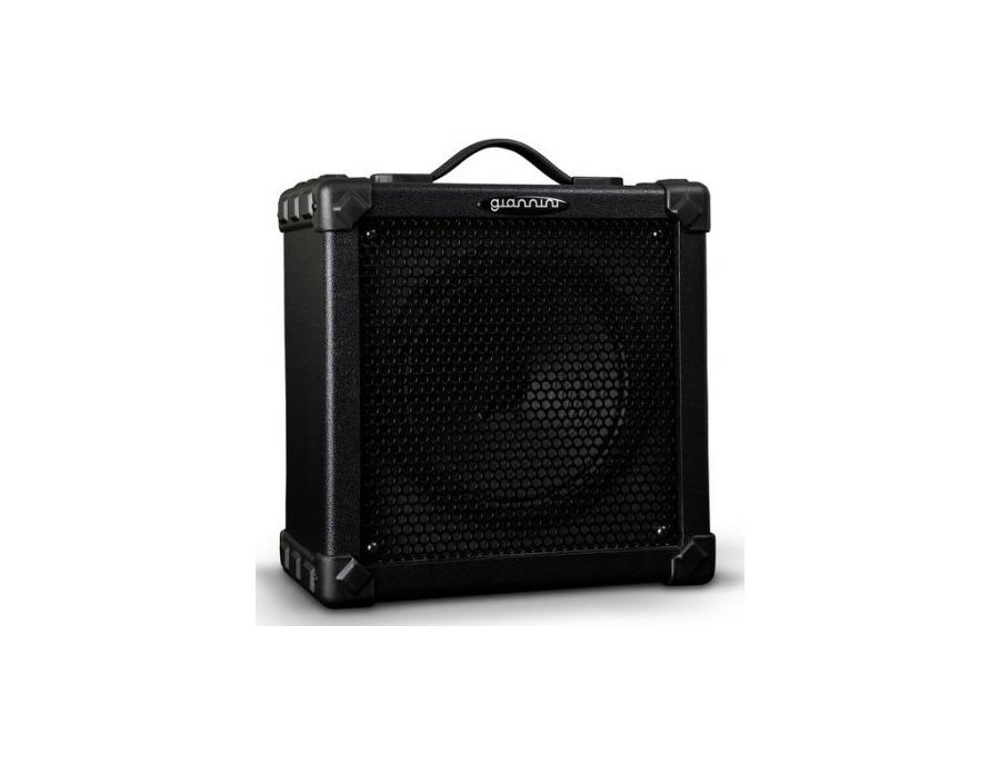 Bass Amplifier Gianinni B20