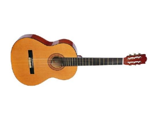 Sunlite acoustic guitar with nylon strings