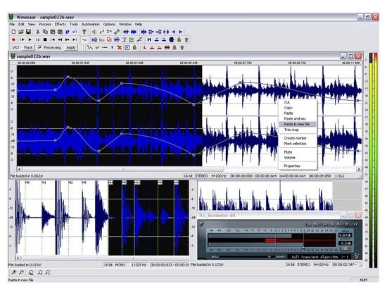 Wavosaur Audio Editor