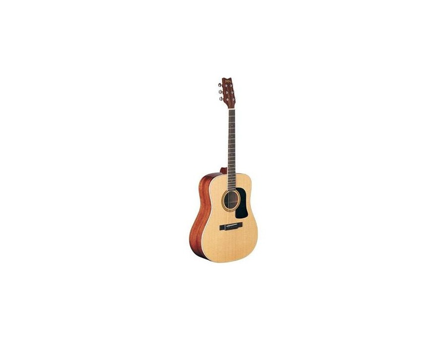 Washburn D10S Solid Top - Natural
