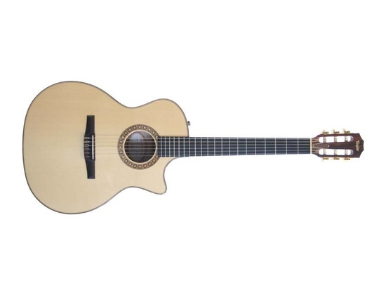Taylor NS64-CE