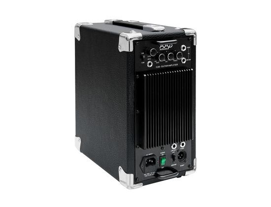 Phil Jones CUB AG-100 Acoustic Guitar Amplifier
