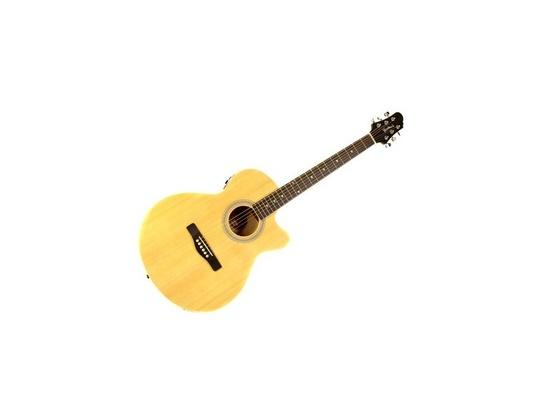 Woodstock Electro-Acoustic