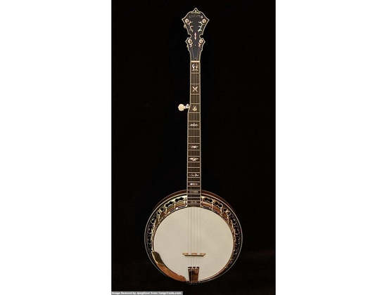 Stelling Staghorn Banjo