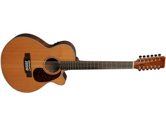 hudson 12 string guitar