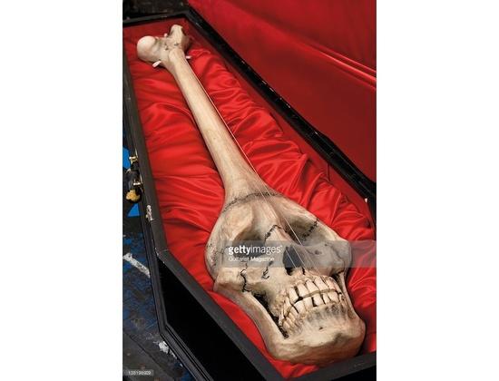 Brian May Skull Guitar