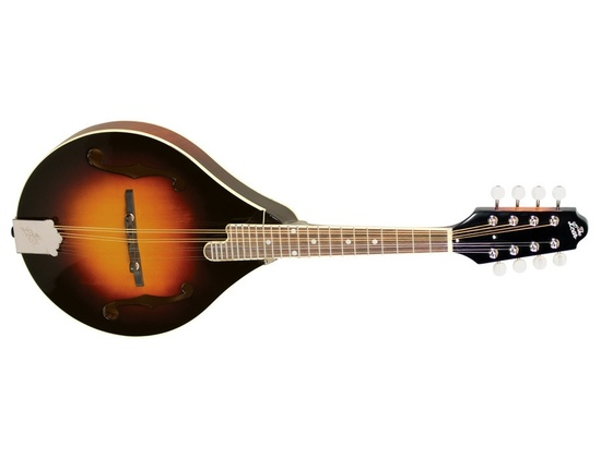 The Loar LM-220
