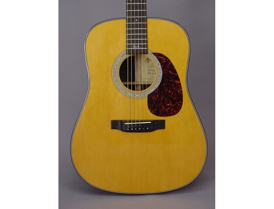 Martin D-16BH Beck Signature Edition Guitar