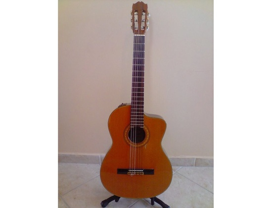 TAKAMINE nylon, solid cedar top