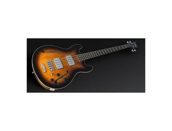 Warwick Star Bass