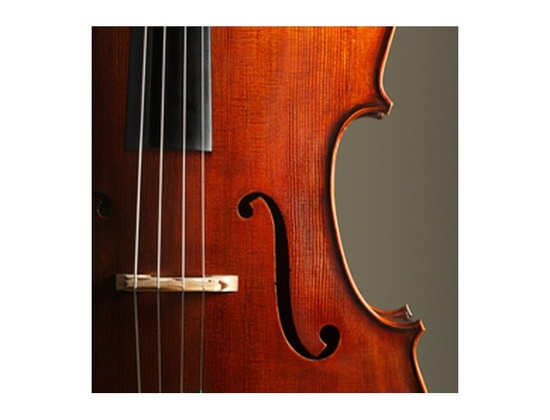 Orchestral Strings