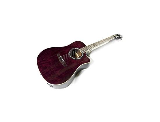 Fender T-Bucket 300CE Ash Transparent Violet