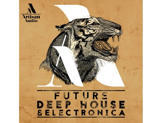 Artisan Audio Future Deep House & Electronica