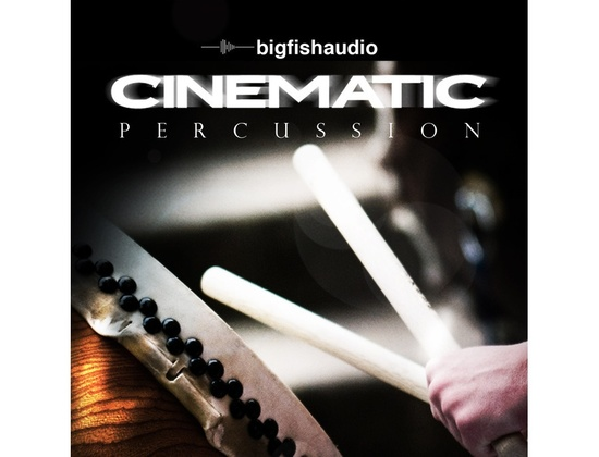Big Fish Audio Cinematic Percussion