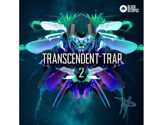 Black Octopus Transcendant Trap 2 by Paradigm Theorem