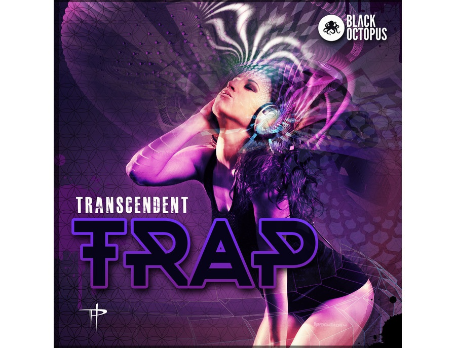 Black octopus transcendent trap by paradigm theorem xl
