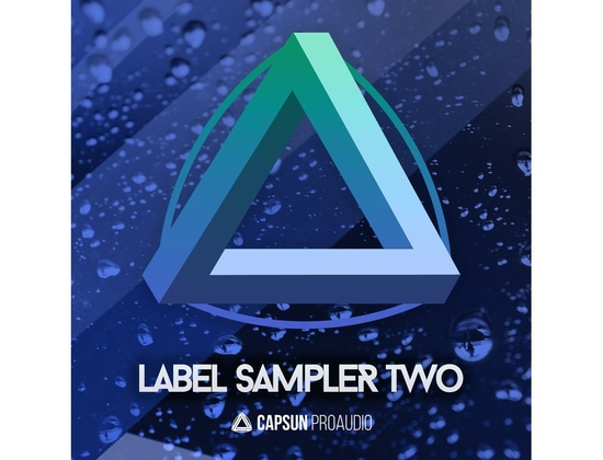CAPSUN ProAudio Label Sampler 2