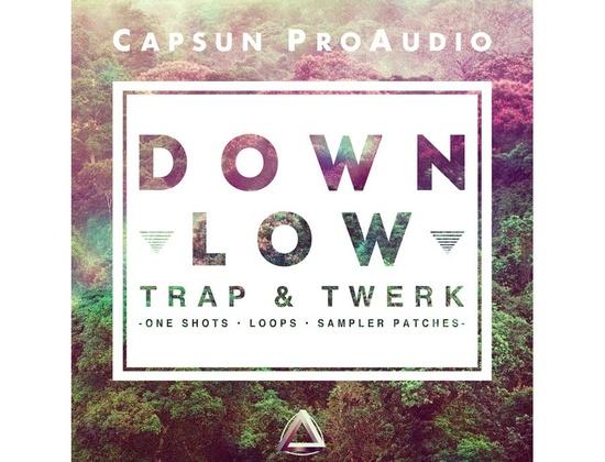 CAPSUN ProAudio Down Low - Trap & Twerk