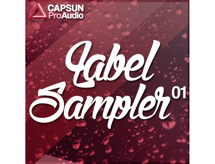 CAPSUN ProAudio Label Sampler One