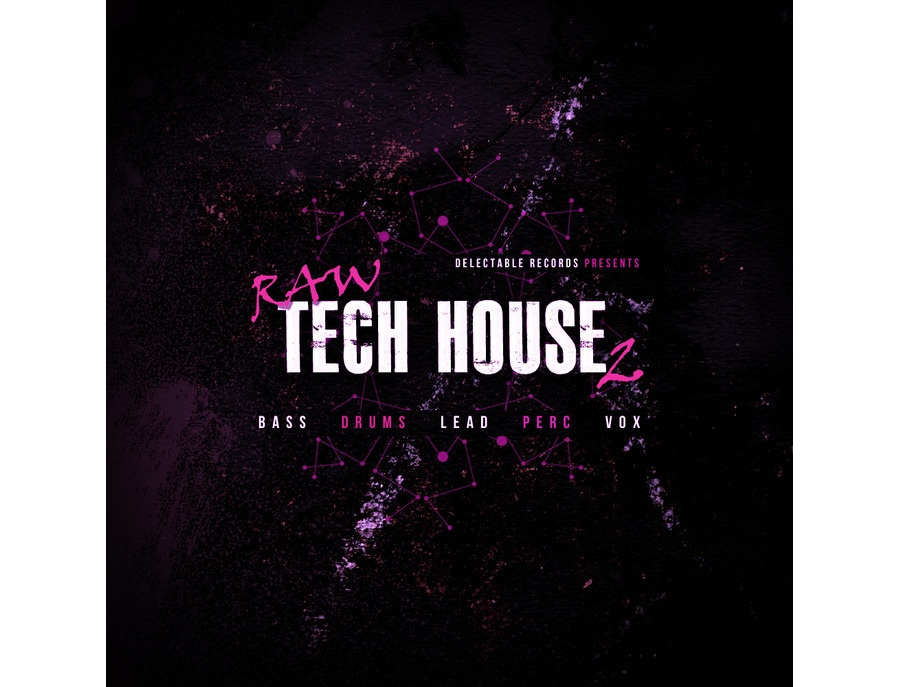 Delectable Records Raw Tech House 2