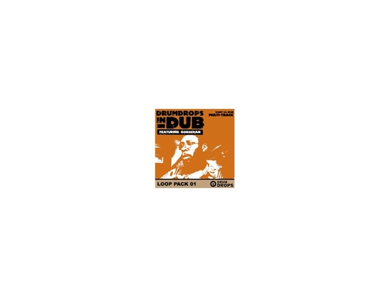 DrumDrops Drum Drops In Dub Vol 2 Pack 1