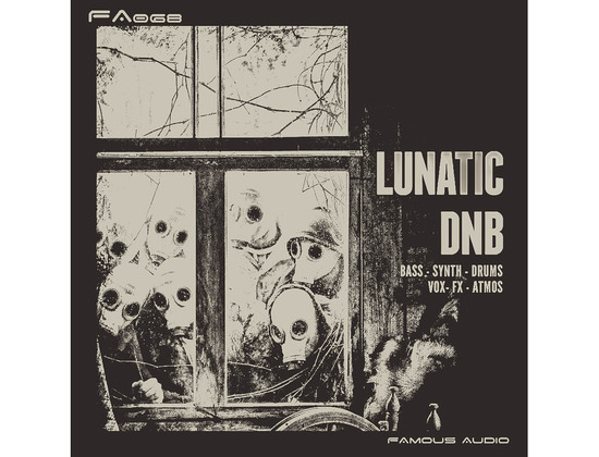 Famous Audio Lunatic DnB