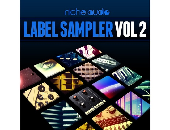 Niche Audio Label Sampler Vol. 2