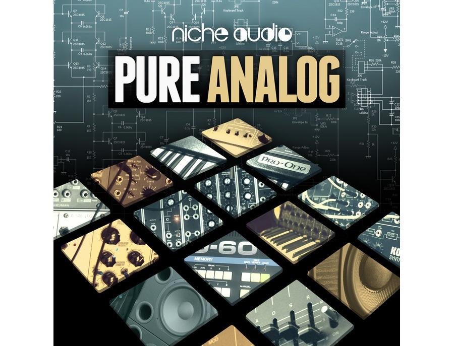 Niche Audio Pure Analog
