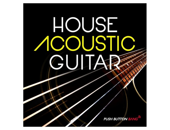 Push Button Bang House Acoustic Guitar