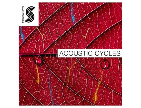 Samplephonics Acoustic Cycles
