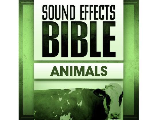 Sound Effects Bible Animals