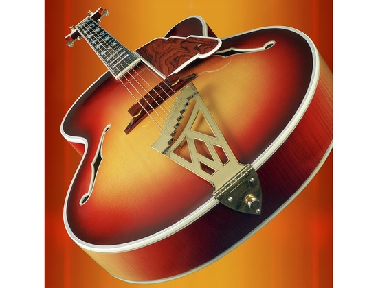 D' Aquisto New Yorker Archtop