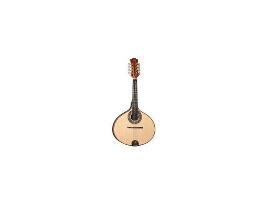 1979 Giannini mandolin