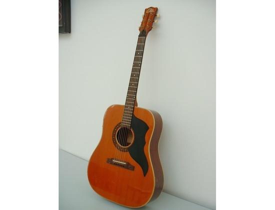 1969 Eko Ranger 6