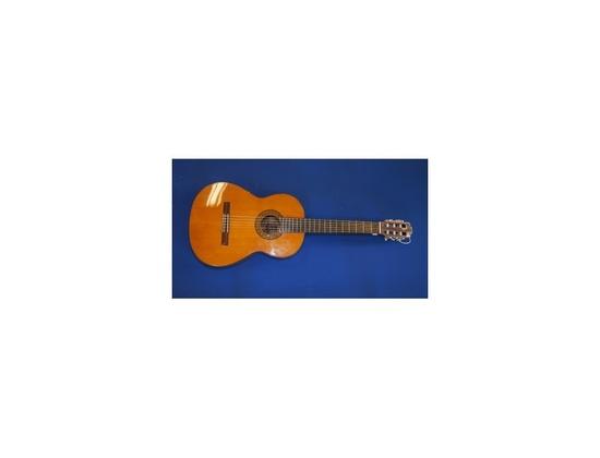 Fender FC-110