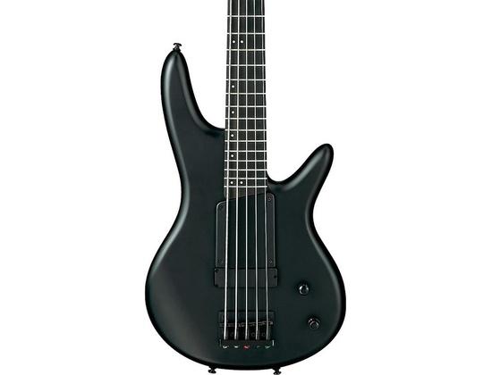 Ibanez Gary Willis Signature Five-String Electric Bass Guitar Flat Black