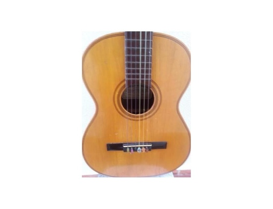 Gianinni Acustic Guitar from 60's