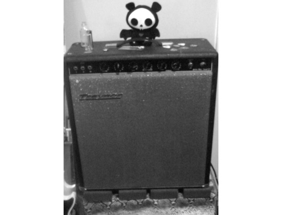 Traynor YGM Guitar Mate Reverb (1969)