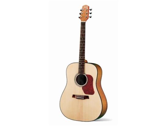Walden D550 Dreadnought Guitar