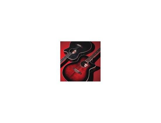 Ibanez AEQ-200T Electro Acoustic