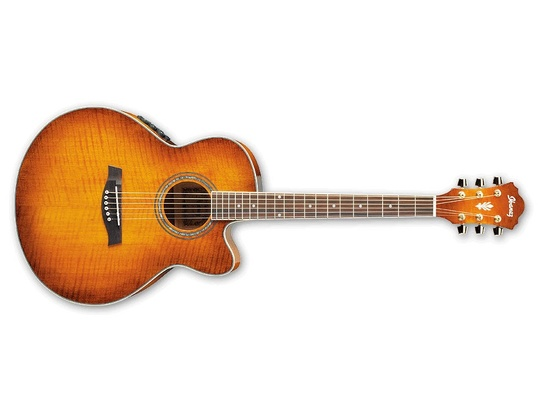 Ibanez AEL20E Acoustic-Electric Guitar