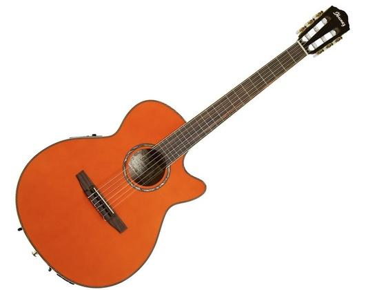 Ibanez AEG10NII Nylon String Cutaway 6 String Guitar