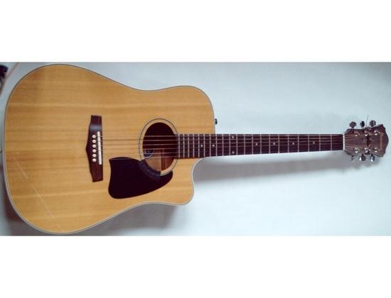 Ibanez AE300 acoustic