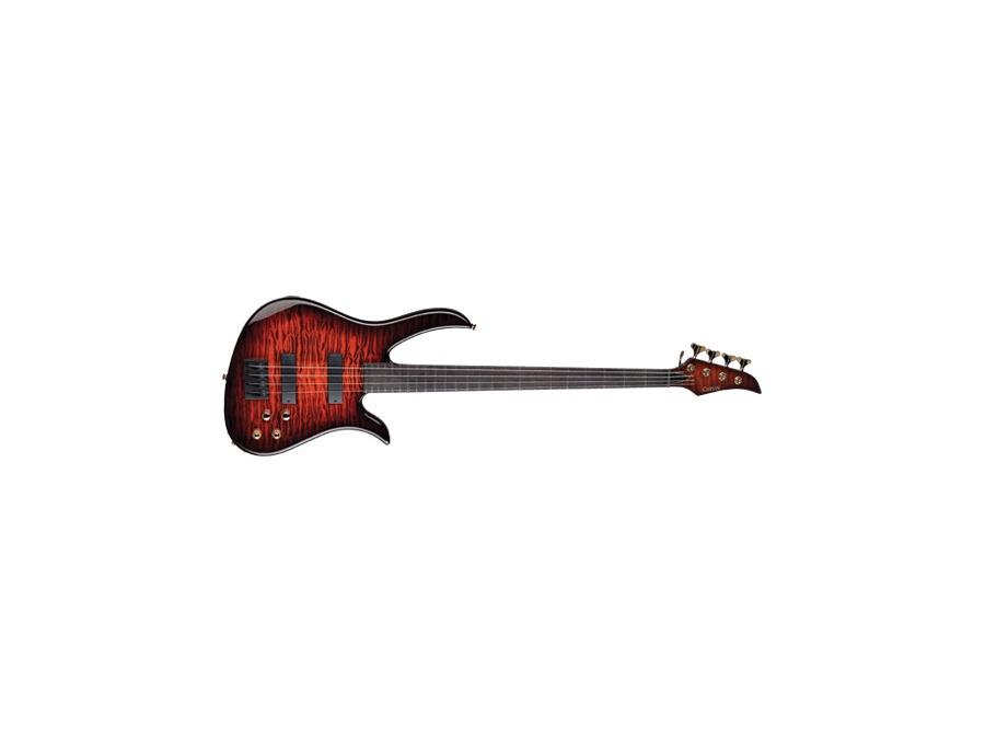 B24 Brian Bromberg Signature Bass