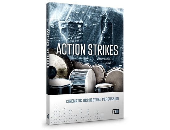 NI Action Strikes