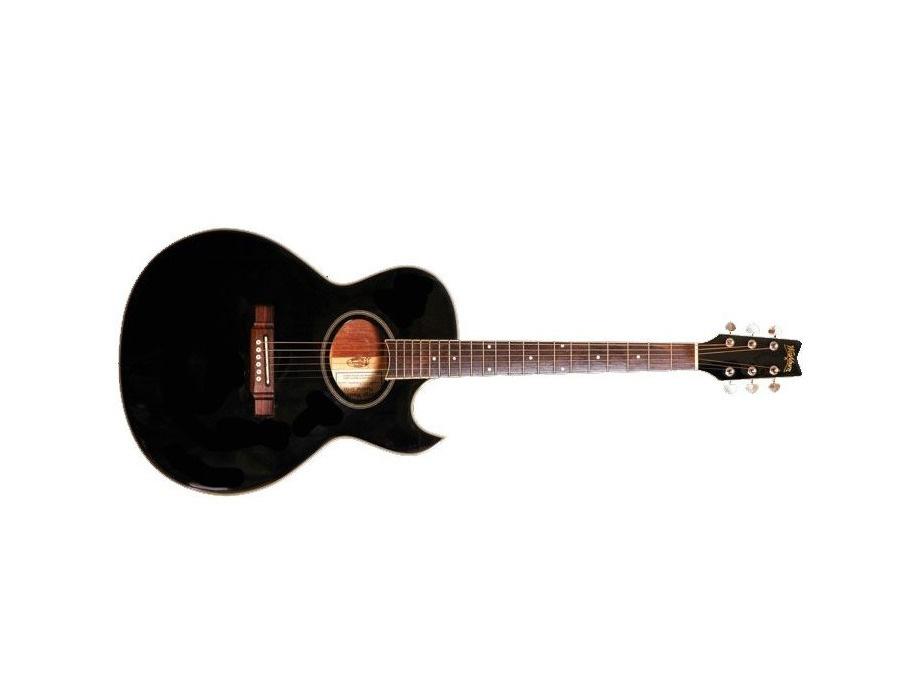 Washburn ea 20 acoustic guitar xl