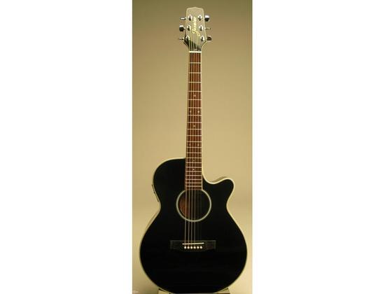 acoustic electric guitars equipboard. Black Bedroom Furniture Sets. Home Design Ideas